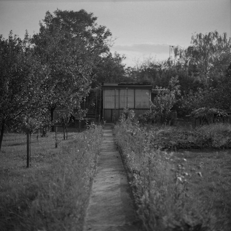 Ogrodki-dzialkowe-042
